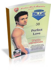 Men In Blue: Perfect Love